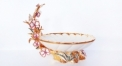 Imperial plum flower fruit bowl (colored)